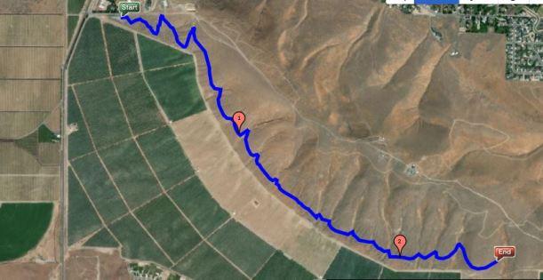 Badger Westgate Round the Mtn 5 Mile